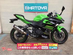 カワサキ/Ninja 250 2018年LEDヘッドライト採用型 ナサートマフラー装着