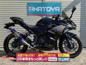 カワサキ/Ninja 250 2020年モデル ビームスマフラー装備 マルチバー メットホルダー
