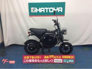 ヤマハ/EC-02