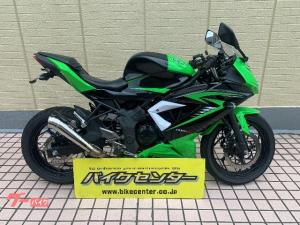 カワサキ/Ninja 250SL グリーン 社外マフラー