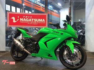カワサキ/Ninja 250R 2009年モデル ETC付 カスタムパーツ多数