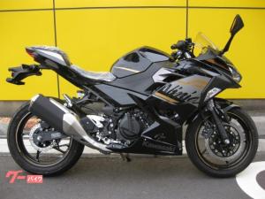 カワサキ/Ninja 250 2020モデル 新車 正規車輛