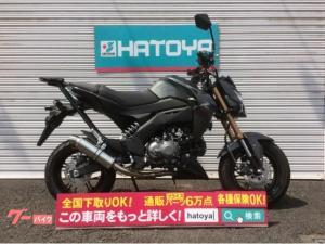 カワサキ/Z125PRO 2017年モデル ビームスマフラー リアキャリア