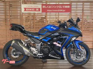 カワサキ/Ninja 250 スクリーン フェンダーレス