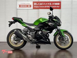 カワサキ/Z250 ABS 2017年モデル スライダー装備