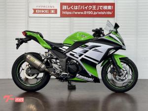 カワサキ/Ninja 250 ABS カスタムマフラー グリップヒーター装備
