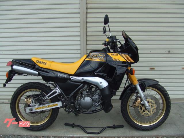 ヤマハ TDR250の画像(山梨県