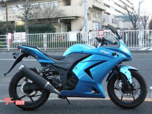 カワサキ/Ninja 250R インジェクション フルカウル