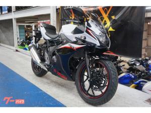 スズキ/GSX250R 2020年モデル ツートン ホワイト