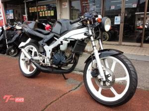 ホンダ/NS-1 2サイクル ネイキッド ブラック
