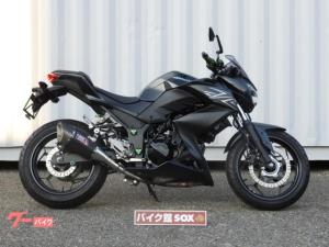 カワサキ/Z250 2016モデル