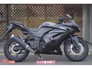 カワサキ/Ninja 250R マルチホルダー装備