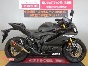 ヤマハ/YZF-R25 2019年モデル アクラポビッチスリップオン TTSレーシングバックステップ レバーカスタム