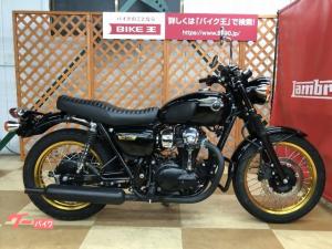 カワサキ/W800 スペシャルエディション ワイバンマフラー エンジンガード装備