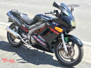 カワサキ/ZZ-R250 ブラック