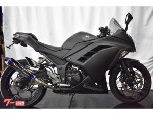カワサキ/Ninja 250L マッドブラックカスタム SpecialEdition