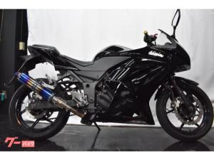 カワサキ/Ninja 250Rブラックカスタム 改マフラー