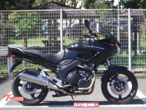 ヤマハ/TDM900 2010年モデル