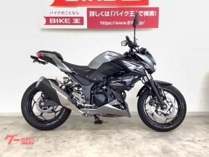 カワサキ/Z250 ABS フェンダーレスキット装備