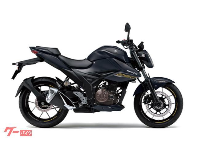 スズキ GIXXER 250 2021年モデルの画像(長野県