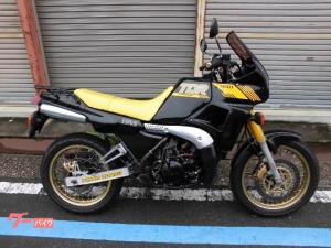 ヤマハ/TDR250
