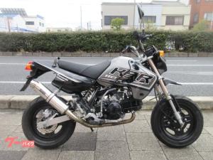 カワサキ/KSR110 マフラーカスタム仕様
