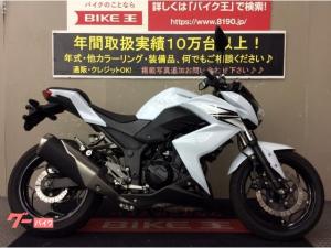 カワサキ/Z250 2013年モデル フルノーマル