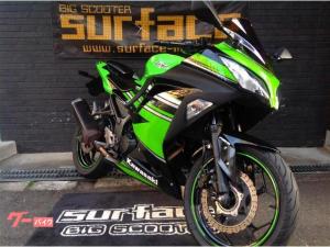 カワサキ/Ninja 250 ABSモデル ミラースクリーン ヘルメットホルダー