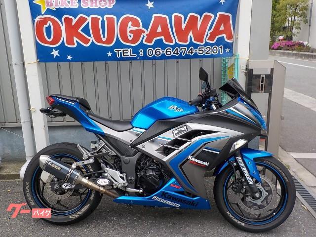 カワサキ Ninja 250ABS マフラー付きの画像(大阪府