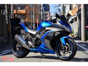 カワサキ/Ninja 250 ABS Special Edition