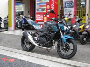 カワサキ/Z250  2021最新モデル
