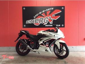 カワサキ/Ninja 250R 2011年モデル ノーマル EX250K