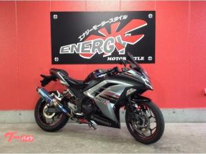 カワサキ/Ninja 250 2013年式 EX250L