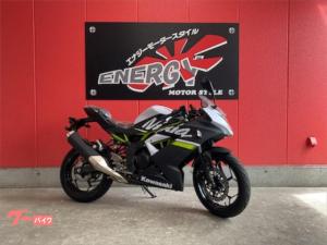 カワサキ/Ninja 250SL ニューモデル カラーフレーム