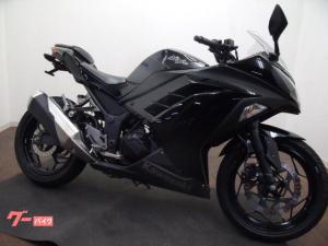 カワサキ/Ninja 250  タイヤ前後新品フェンダーレス