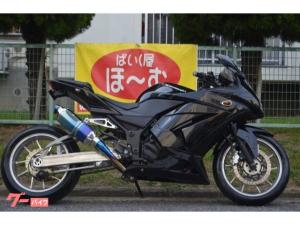 カワサキ/Ninja 250R フルカスタム ロンスイ ゲイルスピード ブレンボ