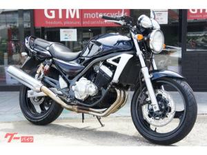 スズキ/GSX250FX 2005年 最終モデル タンデムバー