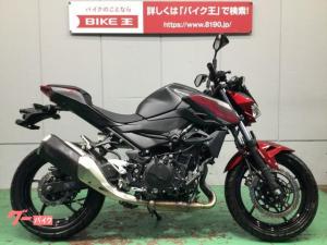 カワサキ/Z250 2019年式モデル ノーマル