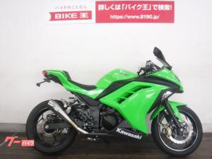 カワサキ/Ninja 250 1オーナー SP忠男マフラー ステダン等カスタム多数