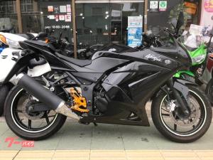 カワサキ/Ninja 250R ベビーフェイス バックステップ装備