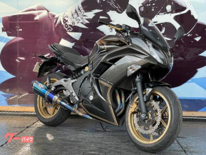 カワサキ/Ninja 400 ABS LimitedEdition BEETフルエキ ETC搭載