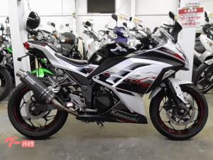 カワサキ/Ninja 250 ABS スペシャルエディション ETC等