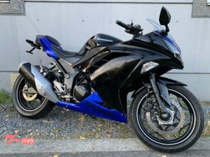 カワサキ/Ninja 250 ABS LEDテール フェンダーレス