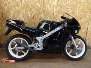 ホンダ/NS-1 CBR仕様 1994モデル AC12