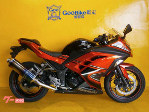 カワサキ/Ninja 250 アールズギヤマフラー グーバイク鑑定車