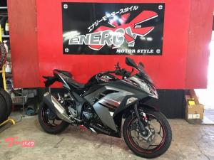 カワサキ/Ninja 250 スペシャルエディション ABS EX250L型