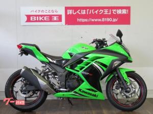 カワサキ/Ninja 250スペシャルエディション フェンダーレス カスタムレバー マルチバー ヘルメットホルダー