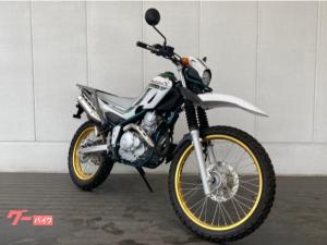 ヤマハ/セロー250 ファイナルエディション 2020年モデル ETC2.0 純正オプションリアキャリア トレッキングバイク スペアキー
