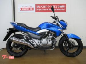 スズキ/GSR250 水冷ツインネイキッド ブルーメタリック