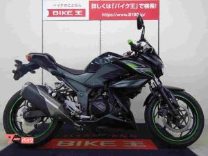 カワサキ/Z250 2013年モデル MRAスクリーン
